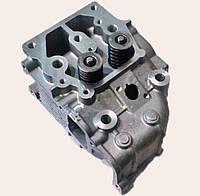 Головка блока цилиндра в сборе Витязь/КАМА/ZUBR (2 болта) для двигателя мотоблока 186F