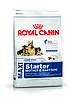 Royal Canin Maxi Starter - корм для щенков крупных пород до 2 месяцев, беременных и кормящих сук 15 кг