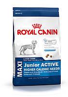 Royal Canin Maxi Junior Active - корм для щенков до 15 месяцев с высокими энергетическими потребностями 15 кг, фото 1