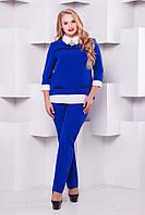 Стильный женский брючный костюм 1130 электрик  48-54  размеры