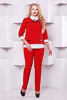 Стильный женский брючный бордовый костюм 1130    48-54  размеры