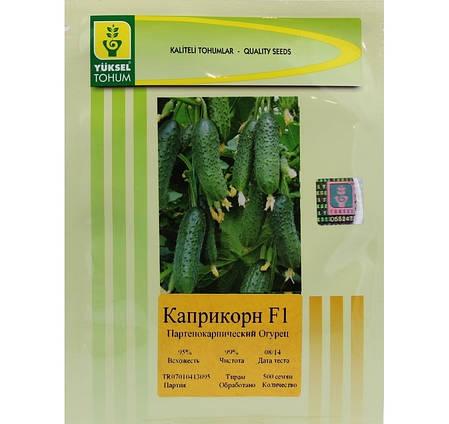 Семена огурца Каприкорн F1 / Kaprikorn F1, 500 семян — огурец партенокарпический, Yuksel Seeds, фото 2