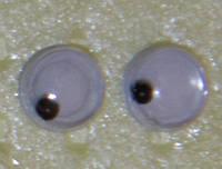 Глаза бегающие 5 мм.
