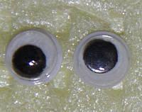 Глаза бегающие 5 мм. зрачок  3мм.