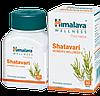 Шатавари Хималая  (Shatavari Himalaya) 60 кап. Женское здоровье