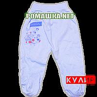 Ползунки (штанишки) на широкой резинке р. 80-86 ткань КУЛИР 100% тонкий хлопок ТМ Алекс 3166 Голубой