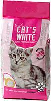 Наполнитель туалетов для кошек Кетс Вайт (Cat's White Natural), бентонит с запахом детской присыпки, 5 кг/6 л