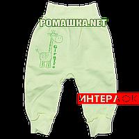 Штанишки на широкой резинке р. 80 демисезонные ткань ИНТЕРЛОК 100% хлопок ТМ Алекс 3297 Зеленый1