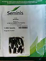 Семена огурца МАША  F1. Упаковка 1 000 семян. Производитель Seminis.