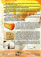 Время сыра