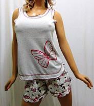 Пижама женская майка с шортами из хлопка, от 42 до 50 р-ра, Харьков, фото 2