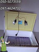 Инкубатор для яиц Наседка (на 100яиц) с терморегулятором и механическим переворотом, фото 1