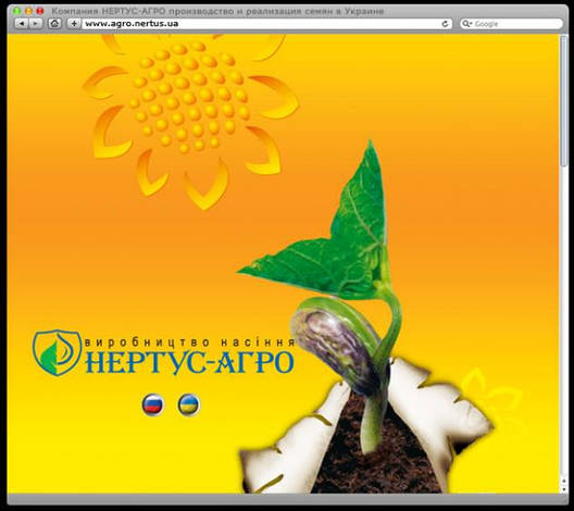 Семена подсолнечника Римисол Евро-Лайтнинг Clearfield (Элита) Нови Сад (Сербия), фото 2