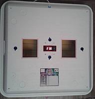 Інкубатор Рябушка SMART PLUS -TURBO цифровий терморегулятор