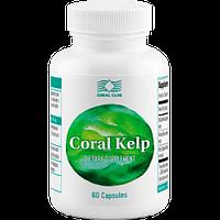 Бурая водоросль - продукт для деинтоксикации, улучшения кровообращения и обогащения организма йодом.