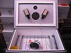 Инкубатор бытовой для яиц Наседка 70 механический переворот, фото 4