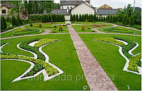 Интерьерный газон, фото 1