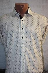 Рубашка S Besni
