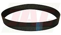 Ремень RIB-BELT  PL01943X20