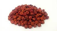 Рябина обыкновенная плоды (Рябина красная), фото 1