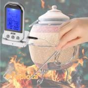 Беспроводной дистанционный термометр со встроенным таймером для приготовления в тандыре.