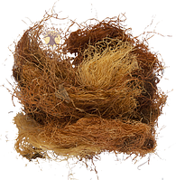 Кукурузные рыльца  1кг оптом