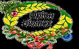 ООО «Орион-Биотех»