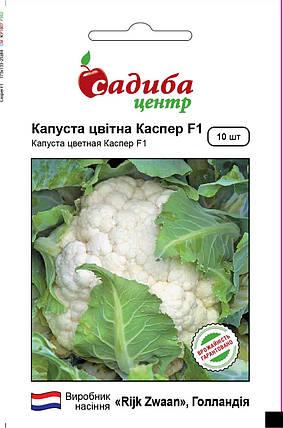 Семена капусты Каспер F1 (Rijk Zwaan, САДЫБА ЦЕНТР), 10 семян — средне-поздняя (100 дней), цветная, фото 2
