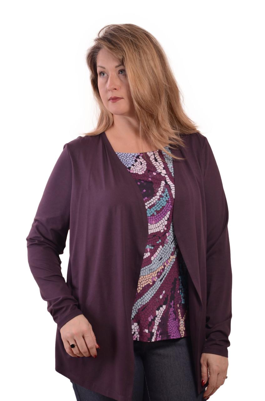 Блуза двійка баклажан ботал , бл 052-1, розмір 50-54