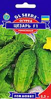 Насіння огірок Цезар F1