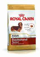 Royal Canin Dachshund Adult - корм для собак породы такса с 10 месяцев 1,5 кг