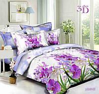 Красивое постельное бельё из хлопка Ранфорс (полуторка)