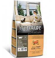 Pronature Holistic (Пронатюр Холистик) CAT DUCK and ORANGE - беззерновой корм для кошек (утка/апельсин),0.34кг