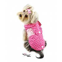 РАСПРОДАЖА! Рубашка классическая с кружевом для собак розовая