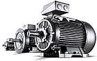 Электродвигатель Siemens (Сименс) 1LE1002-1CB22-2AA4, фото 4