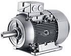 Электродвигатель Siemens (Сименс) 1LE1002-1CB22-2AA4, фото 2