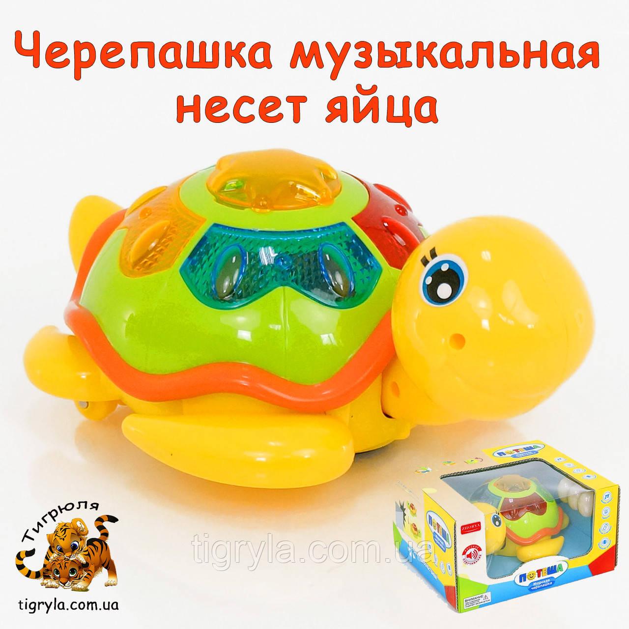 Морская черепашка музыкальная, несет яйца, развивающая игрушка