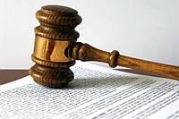 Исковое заявление, встречное исковое заявление, апелляционная жалоба, кассационная жалоба