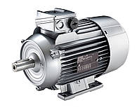 Электродвигатель Siemens (Сименс) 1LA5183-2AA10