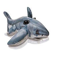 Intex Интекс  57525 Надувная акула