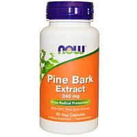 Экстракт сосновой коры (Пикногенол), Now Foods, 240 мг, 90 капсул