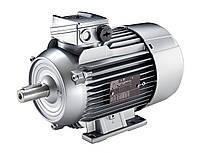 Электродвигатель Siemens (Сименс) 1LA5186-6AA10