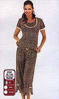 Вискозная пижама Cocoon COC 31 KK (XL)