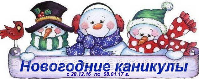 Новогодние каникулы!!!