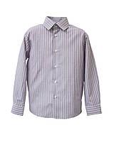 Школьная рубашка для мальчика Полоса Фиолет