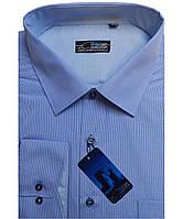 Рубашка мужская Castello Graf 16