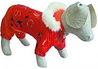 Костюм зимний Забава той-терьер для собаки, длина - 25 см, объем 28 см