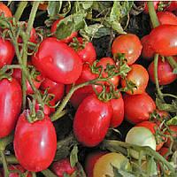 Семапил F1 семена томата Semo 1 000 семян