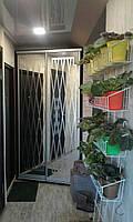 Шкаф-купе, двери - зеркало с пескоструйным рисунком, ДСП