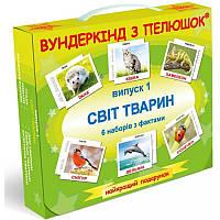 Подарочный набор карточек Домана CВІТ ТВАРИН